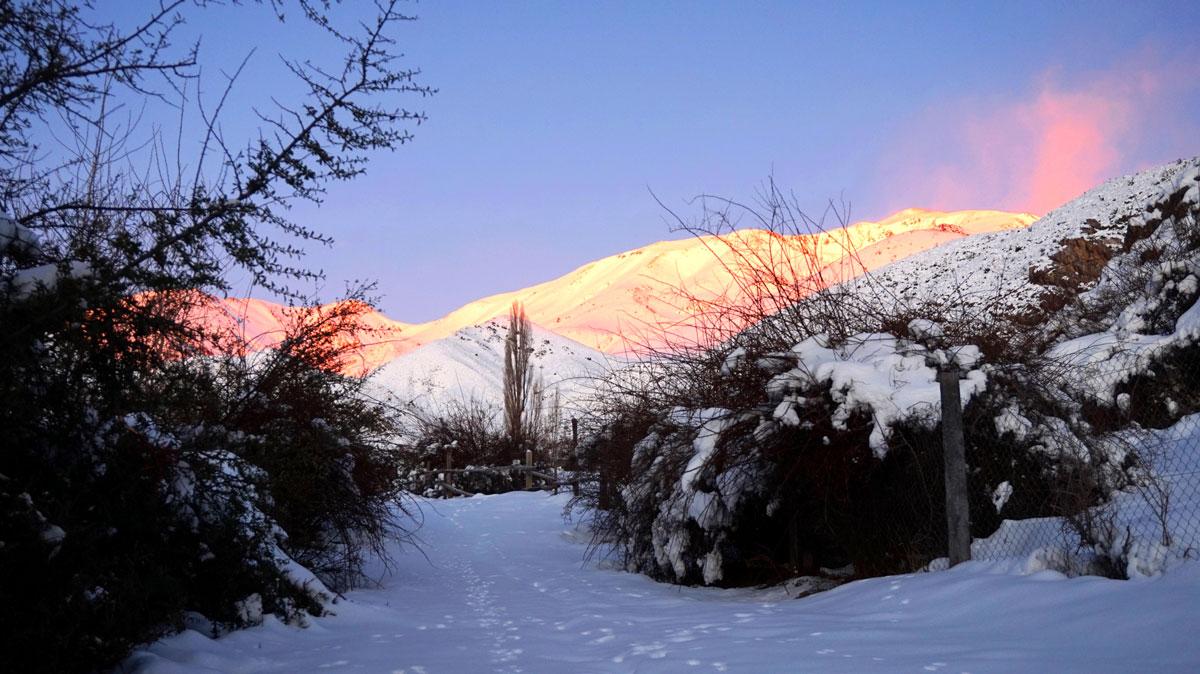 Los colores del invierno en Los Zorzales. Foto: Ana Vogel